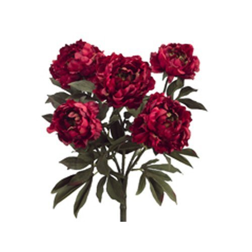 215-peony-bush-x5-burgundy-wine-pack-of-6-by-allstate-floral