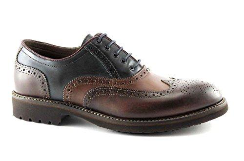 NERO GIARDINI 4401 scarpe uomo francesina pelle puntale inglese Multicolore
