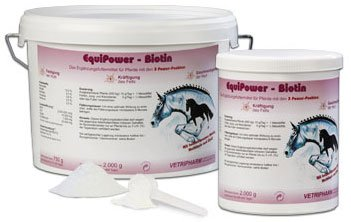 EquiPower Biotin 2kg