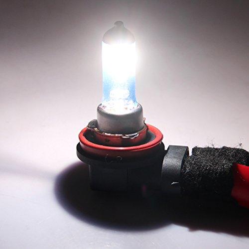Winpower H11 Halogène Ampoules de phare 100W 5000k Blanc chaud Lampe 12V Auto Voiture Feux de brouillard Feu de position DRL Ampoule, 2 pièces