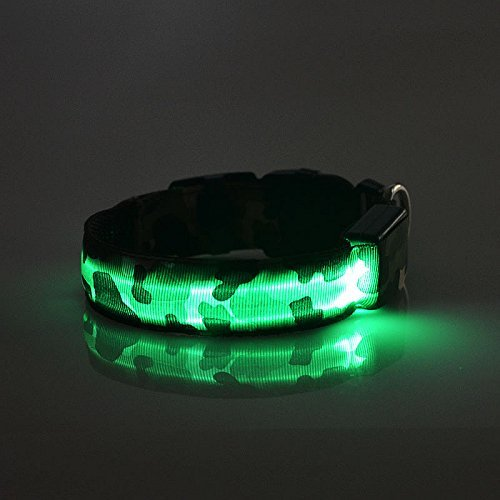 LED Hunde Leuchthalsband in 7 Farben Hund Halsband Katze leuchtet Licht Blinki 5 Größen XS S M L XL (L, Grün)