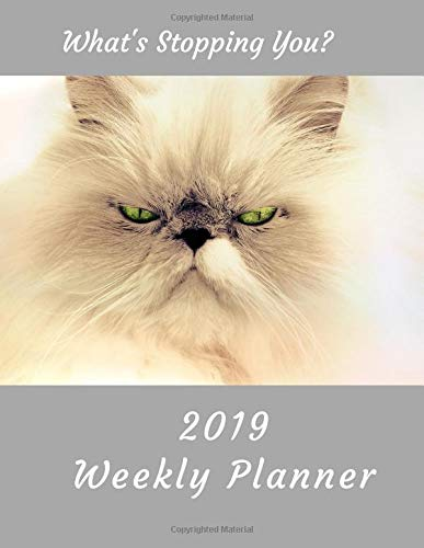 What's Stopping You? 2019 Weekly Planner: Persian Cat Large Size 8.5 x 11 Organizer Diary with Goal Setting & Gratitude Sections (Nature and Animals, Band 6)