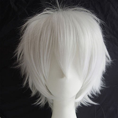 Cosplay Wigs Short Anime Costume Party Full Wigs White Fashion Straight Synthetic Hair for Women Men