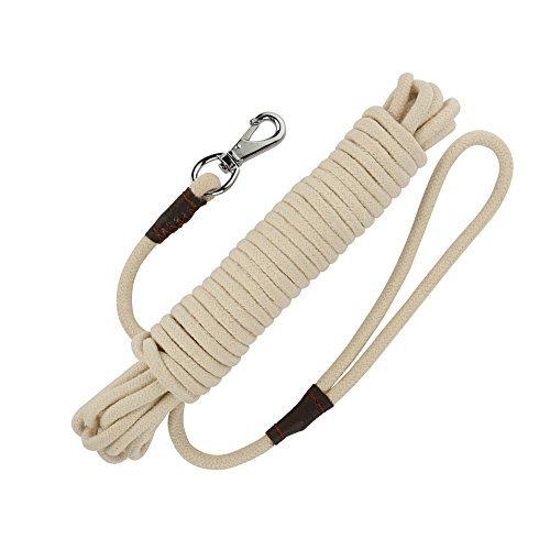 PepPet 16-65Ft Extra Schwere Baumwolle Seil Hund Training Leine für Große/Medium/Kleine Hunde Training/Walking, 32Ft, Beige - 16 Medium Beige Leinen