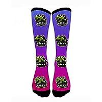 HTETRERW Compression Socks T Rex Dinosaur Crew Sock Crazy Socks Tube High Socks Personalized Novelty Funny Sports High Stockings for Teen Boys Girls