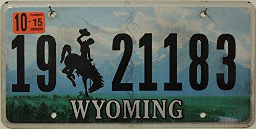 USA Nummernschild WYOMING ~ US Kennzeichen Motiv Cowboy Rodeo Landschaft ~ Blechschild