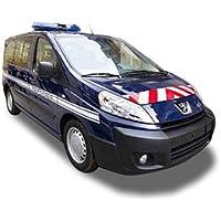Peugeot Expert Gendarmería ...