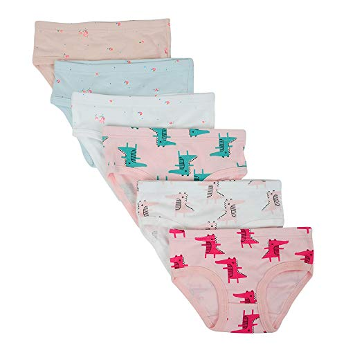 Kidear Bequeme Baumwollene Gemischte Kinder-Unterhosen für Kleine Mädschen. (Eine Packung von 6 Stücke) (Stil12, 2-3 Jahre) (Mädchen Slip 3 4t)