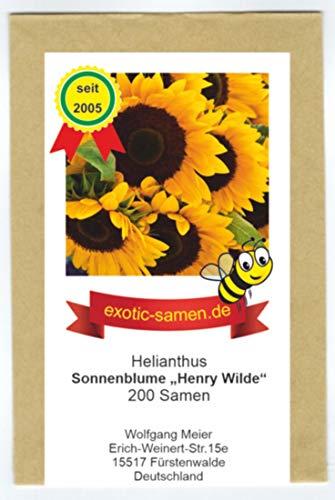 Riesensonnenblume - Bienenweide - Sonnenblume- Henry Wilde - bis 2,50 Meter - mehrstielig - Großpackung - 200 Samen