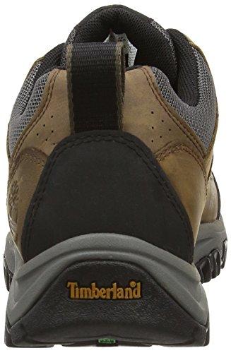 Timberland - Thorton Ftp_bridgeton Low Wp, Scarpe da escursionismo Uomo Marrone