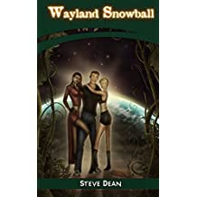 The Servicing and Maintenance of Wayland Snowball