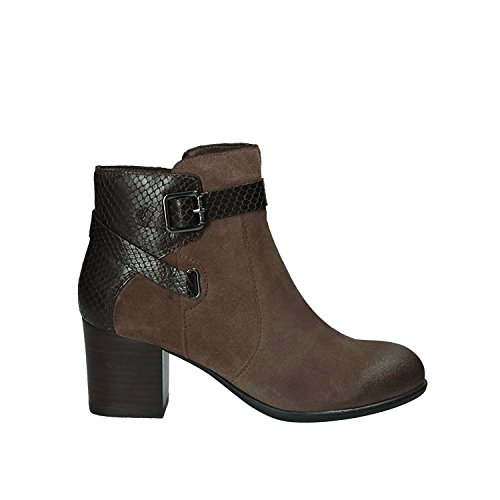 Stonefly Bottines - Boots, Couleur Marron, Marque, Modã¨Le Bottines - Boots Molly 2 Marron