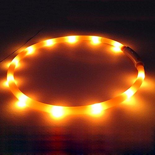 Wasserdichte Halsbänder wiederaufladbare USB LED-Blinklicht-Band-Gurt für Haustier Hunden Katzen (Led-halsband Wasserdicht)