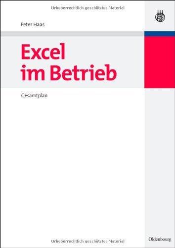 Excel im Betrieb: Gesamtplan (Managementwissen für Studium und Praxis)