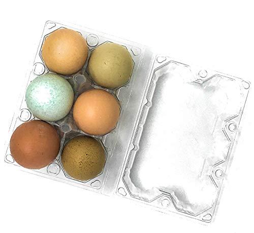 24 Stück Premium Klarer Kunststoff Wiederverwendbare halbe Dutzend Eierkarton mit Etiketten für 6 extra große Eier (Easter Eggs Große Kunststoff)
