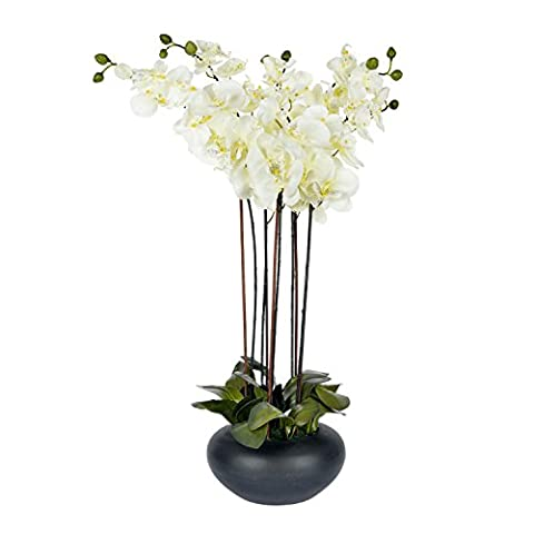 Homescapes Large Oriental Style Cream Orchid with Silk Flowers in