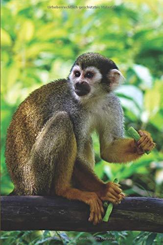 Notizbuch Affe: Tagebuch / Notizbuch liniert mit 120 Seiten und Affen Bild als Motiv