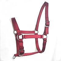 Breastplate Myyxt Equestrian Horses Leather Cuero Fabricado en Material PP y Hebilla de Aleación Caballos Ecuestres Ajustable, m