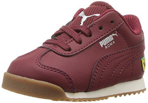 Puma Unisex-Kids Ferrari Roma Sneaker, Pomegranate-Pomegranate, 11.5 M US Little Kid (Schuhe Puma Mädchen Ferrari)