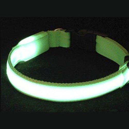 bestofferbuy-3-betriebsarten-glasfaser-blinken-led-haustier-hund-halsband-kleine-grune