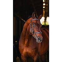 Horseware Rambo Micklem–Multi Bridle Black negro Talla:Cob