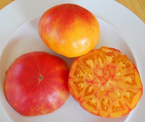 10 ananas tomate Heirloom Variété Seeds- Bicolor organique-jardin