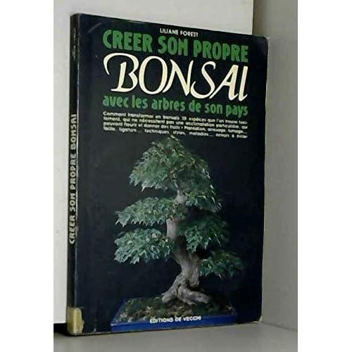Créer son propre bonsaï avec les arbres de son pays