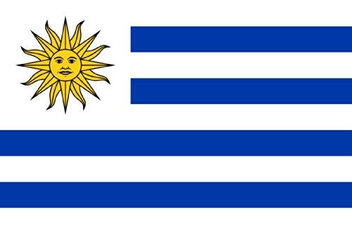 AR TACTICAL WM 2018 Länder Flaggen Hissfahne mit Messingösen 90x150 cm Alle Länder Wählbar (Uruguay) - Uruguay Wm