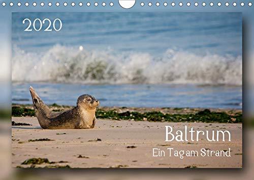 Baltrum - Ein Tag am Strand (Wandkalender 2020 DIN A4 quer)