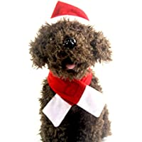 LUOEM Juego de Bufanda y Gorro de Santa para Mascotas Cachorro Gatito Disfraz de Navidad Accesorios de fotografía de Vacaciones para Perro Gato - Tamaño S (Rojo)