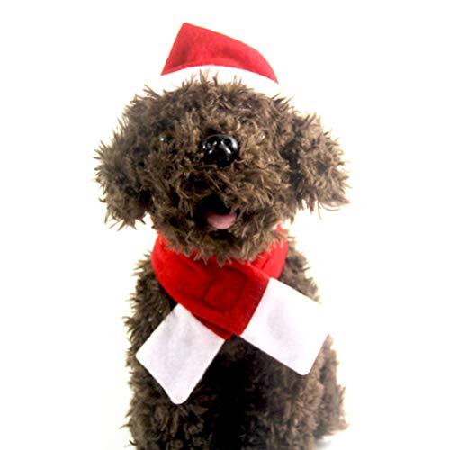 (BESTOYARD Haustier Weihnachtsmütze und Schal Set Welpen Kätzchen Weihnachten Kostüm Urlaub Fotografie Requisiten für Hund Katze - Größe M (rot))