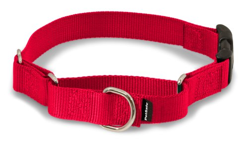 PetSafe Petite Martingale Halsband mit Quick Snap Schnalle Medium-snap