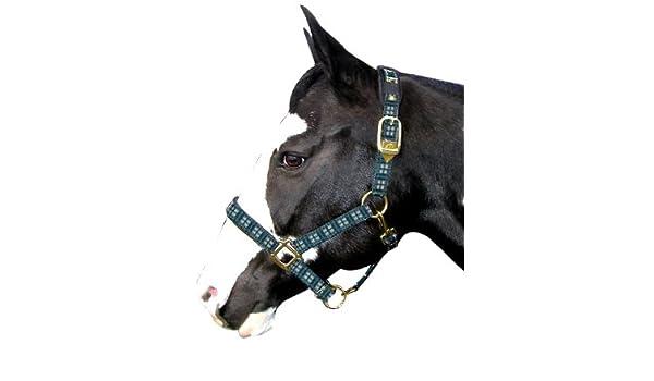 Intrepid International Plaid Nylon Padded Horse Halter