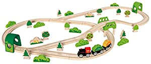 Hape- Circuito de Tren Forest Railway (Barrutoys E3712)