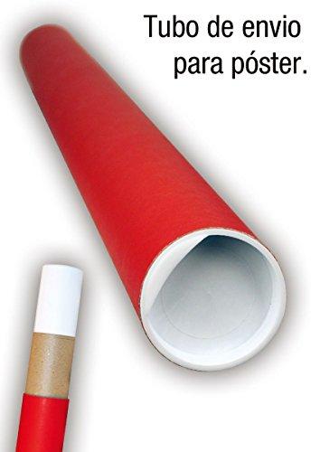 Pster-Pokmon-voli-Evolucin-915cm-x-61cm-embalaje-para-regalo