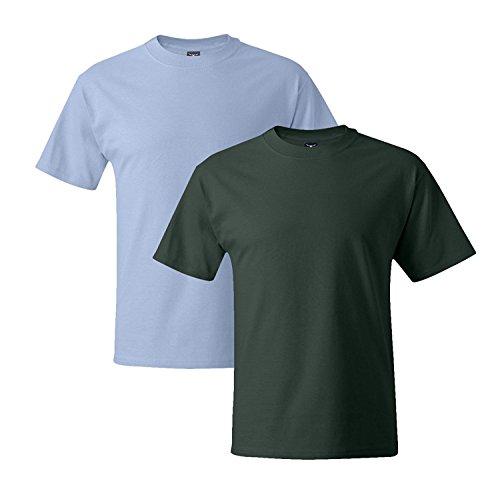Hanes Mens 5180 Short Sleeve Beefy T 1 Deep Forest / 1 Light Blue