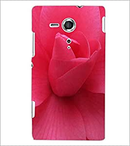 PrintDhaba Pink Rose D-1036 Back Case Cover for SONY XPERIA SP (Multi-Coloured)