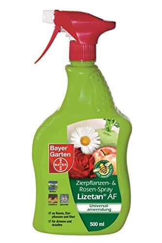 Bayer Jardín de Plantas Ornamentales y rosas de spray lizetan AF Insectos exterior, color blanco, 500ml