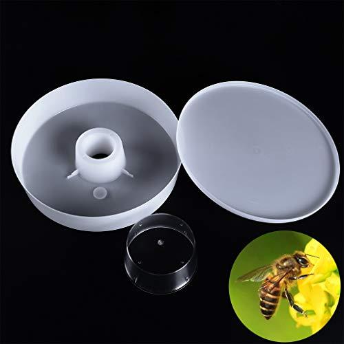 1 juego de 4 pintas y 2 litros de comida rápida para colmena de abejas, equipo de apicultura, kit de alimentación de agua
