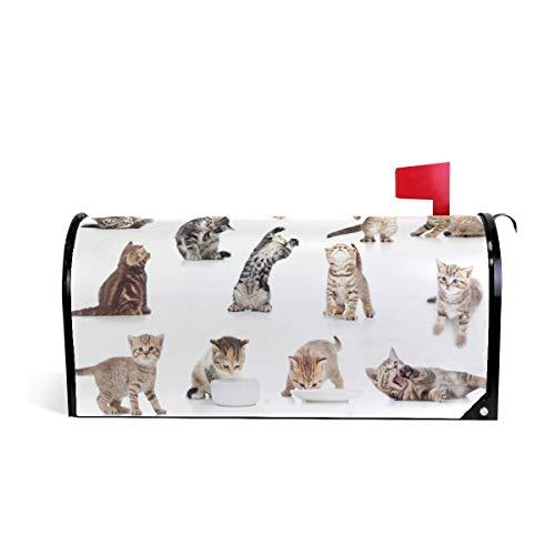 Alaza(mailbox cover) WOOR Funny verspielte Katze Kätzchen, magnetisch, Standardgröße, 45,7 x 52,1 cm 25.5x20.8 inch Oversized Muiti -