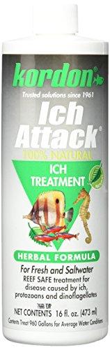 Kordon # 39446100% natürliche und pflanzliche Formel Ich attack-ich Behandlung für Aquarium, 473ml