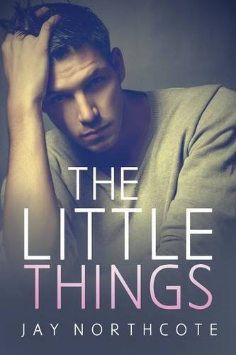 The Little Things by Jay Northcote (2013-11-22)