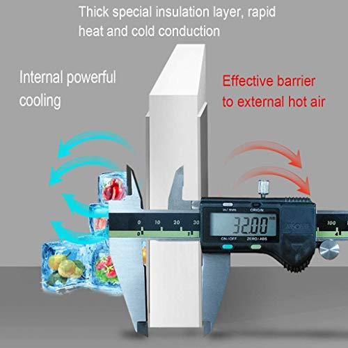 41IWl7SsZVL - Mini refrigeradores Refrigerador portátil para el hogar Refrigerador de insulina Refrigerador portátil para medicamentos del hogar Viaje en automóvil 10L (Color: Blanco, Tamaño: 23.5 * 26 * 33.5cm)