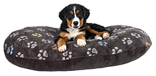 Hundekissen 80 x 50 cm über 10 cm dick kuscheliges Hundekissen mit leicht glänzendem Plüschbezug Mit Reißverschluss Bezug waschbar 30°C ideal auch für Weidenkörbe oder Kunststoffkorb