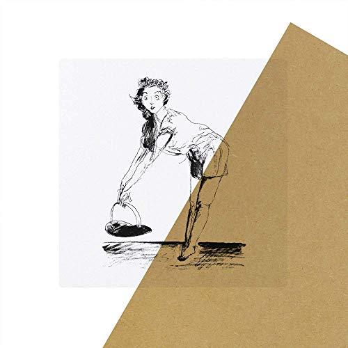 6 x 'Picknick Dame' Transparente Aufkleber / Stickers (SK00028207)