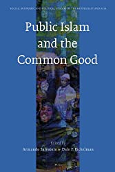 Public Islam and the Common Good (Social, Economic and Political Studies of the Middle East and Asia)