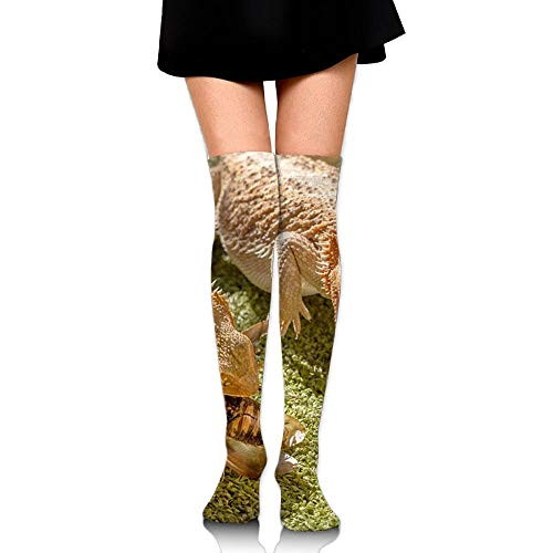 CVDFVFGB Men's/Women's Bearded Dragon Casual Crew Top Socks Knee Long High - Herren Bearded Kostüm