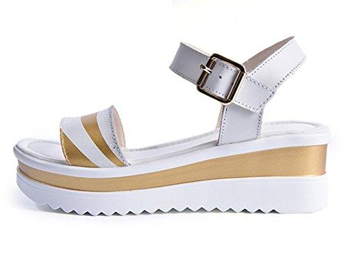 Frühling und Sommer Damen Fischkopf Zehen Metallschnalle Slip On Slip On Keilabsatz Plateau Moderne Slippers Römische Sandalen Gold