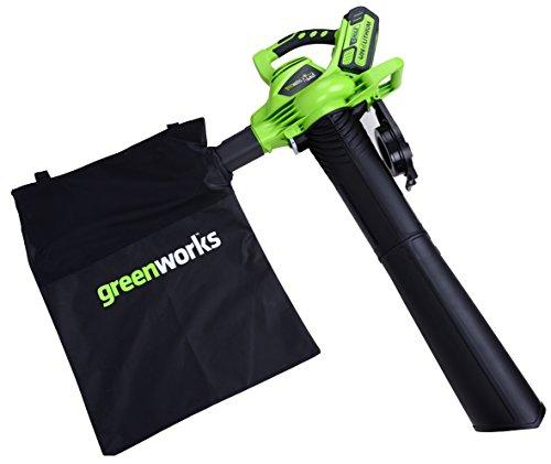 Greenworks Tools Laubsauger 24227
