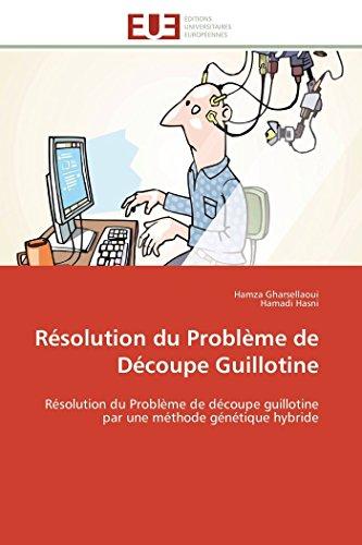 Résolution du problème de découpe guillotine